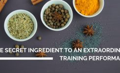 The secret ingredient to an extraordinary training performance