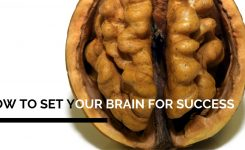 How to set your brain for success